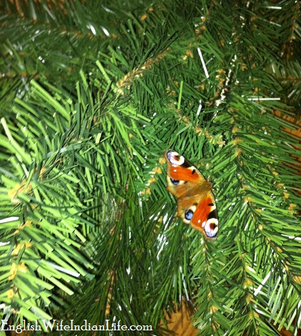 butterfly in Christmas tree