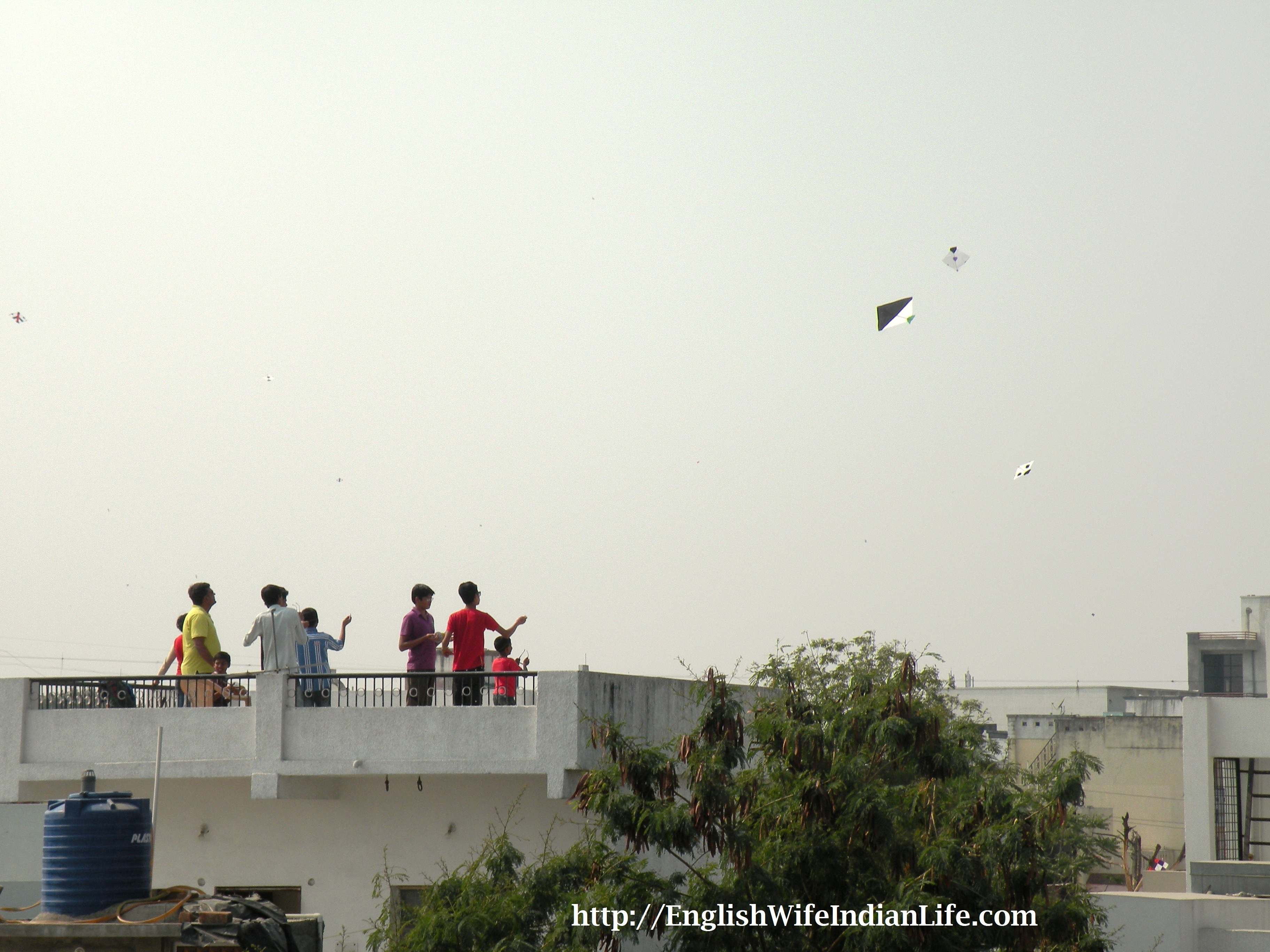 From dawn until dusk the sky remained full of kites. People were