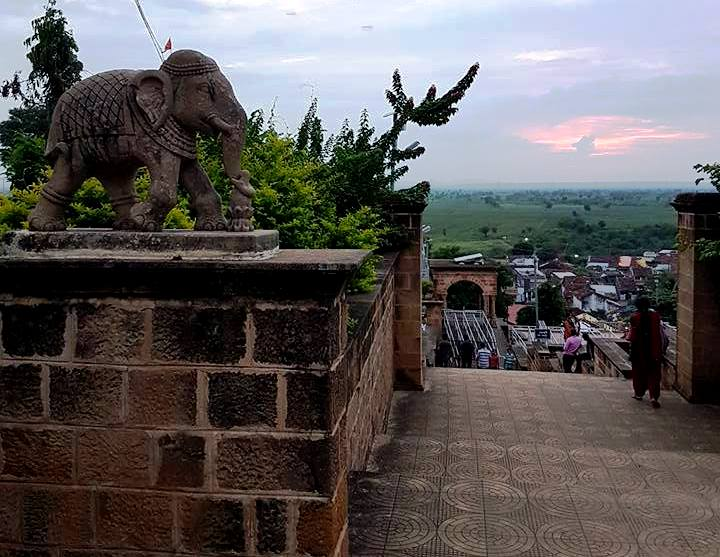 adasa elephant